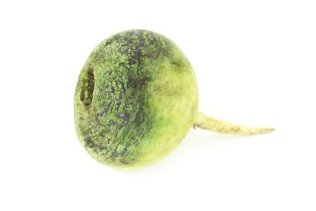 dikon: La raíz del rábano verde close-up aislado en blanco