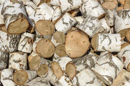 birchen: Big pile of birch logs sawn in the background