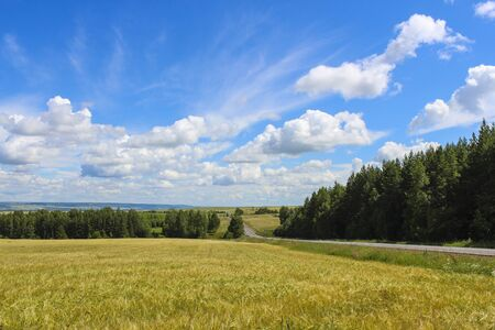 Landscape in the countryside with views of the fields, forests, sky and road