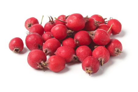 Ripe hawthorn berries isolated on white background