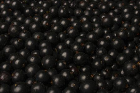 Ripe black currant berries closeup as background