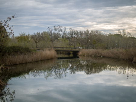 Swamp known as the Olla del Rey. Is a wetland in Castelldefels, Barcelona. Imagens