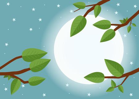 shinning: Cartoon sunset. Flat vector illustration, trees, leaf, moon and night.