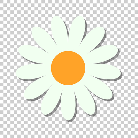 Chamomile flower vector icon in flat style. Daisy illustration on isolated transparent background. Camomile sign concept.