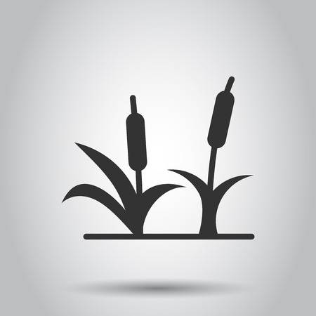 Reeds grass icon in flat style. Bulrush swamp vector illustration on white background. Reed leaf business concept.