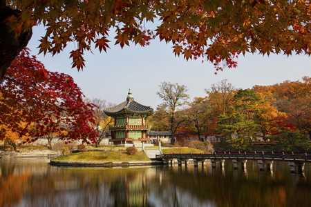Autumn season of  Gyeongbokgung Palace in Seoul,South Korea.
