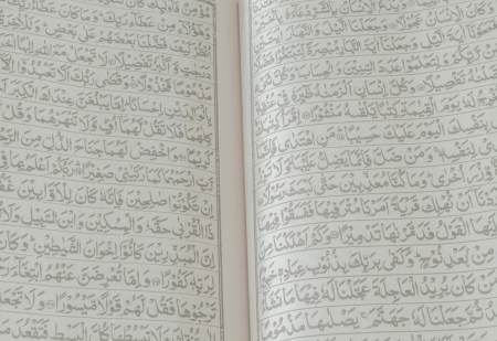Every Muslim will need to study the Quran  photo