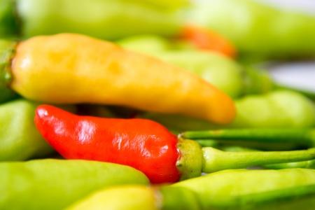 Pepper photo