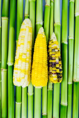 Colorful Indian corns photo