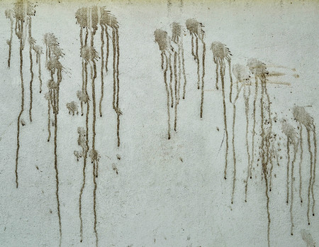 dowdy: Slovenly  Wall  Paint sloppy Dirty  Wall