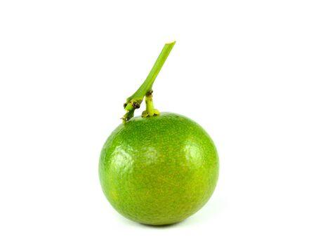segmento: Citrus segmento de fruta de la cal en el fondo blanco