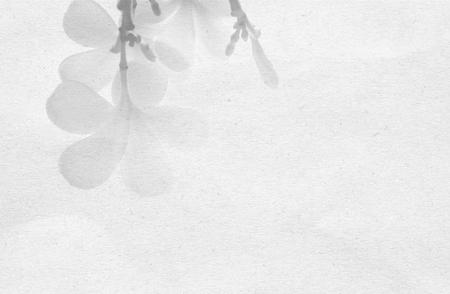 frescura: resumen de antecedentes de la flor en la textura de papel de morera para el fondo Foto de archivo
