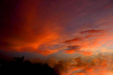 vivid splash of  sky