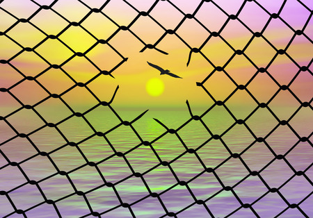 fugitive: Freedom. Bird escaping from the cage, a sign for people who want to be free. Stock Photo