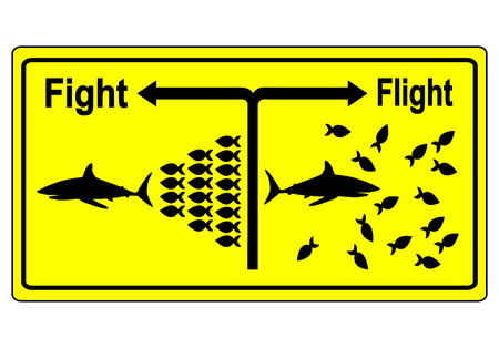 Fight or Flight. Business metaphor for team building and joint struggle in hard times instead of giving up one by one