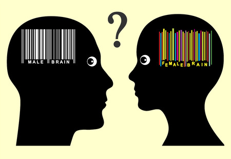 perceptie: Mannelijke en vrouwelijke hersenen. Mannen en vrouwen lijken een ander intellect en perceptie hebben