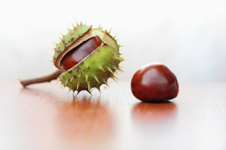 appeared: Bursted the barbed green skin and brown core appeared from inside the fruit