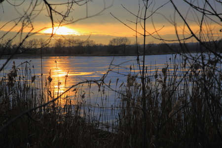 thin ice: Young, yet thin ice, lit by the setting winter sun.