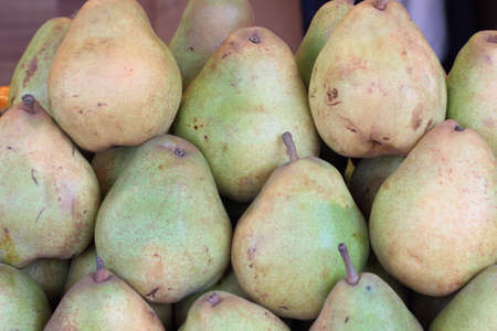 zoned: The large fruits exotic fruit trees, zoned in a temperate climate.