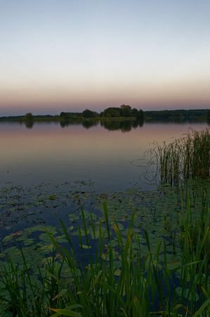 Gentle, delicate colors and shades are observed in the golden hour on the lake after sunset.