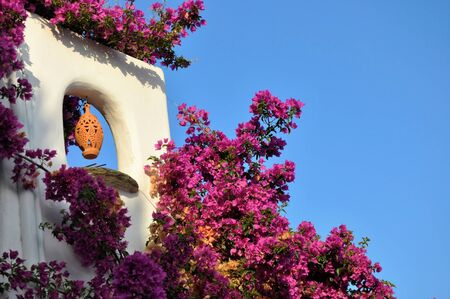 chora: Detail of house and flowers from greek Old Town Alonissos Stock Photo
