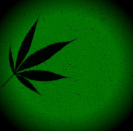 framed: Bright green framed marijuana ganja hemp squared background