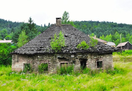 Nostalgic deserted ruined old house with trees on  the roof, Slovakia