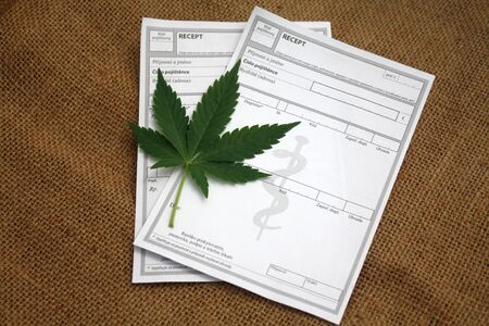 Czech medical recipe prescription and marijuana healing cannabis leaf, medical marijuana concept.