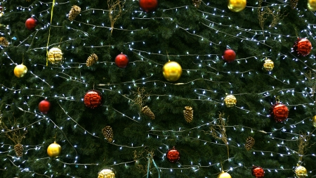 Detail of a Christmas tree photo