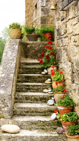 Stairs with handles of geraniums in a rural house Stock Photo
