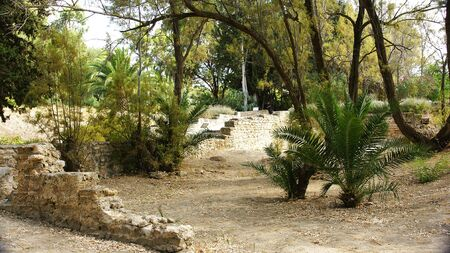 General sight of the ruins of Antonino s Thermal baths, Tunis photo