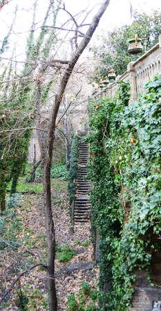 Garden in San Gervasio, Barcelona Stock Photo - 17766957