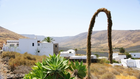 landscape with building, Lanzarote, Canary Islands