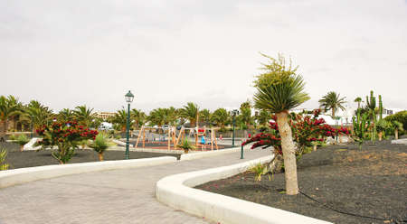 stroll: stroll and gardens in Lanzarote, Canary Islands