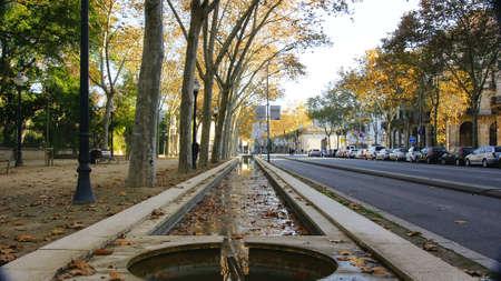 hojas secas: estanque con hojas secas en el paseo de Picasso, Barcelona