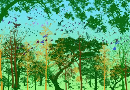 utopian: Vectors, forest and birds