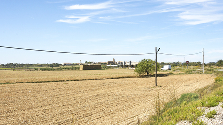 Field of corn threshed in Lleida, Catalunya, Spain Stok Fotoğraf