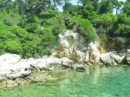 coast of the island of Lokrum, Croatia, Europe