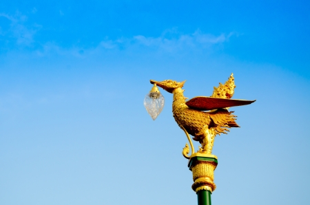 Golden swan lamp on electricity in thailand  photo