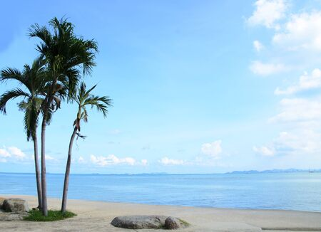 Sea and coconut palms in Thailland Stock Photo