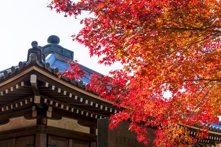 Japan autumn landscape 写真素材 - 110618820