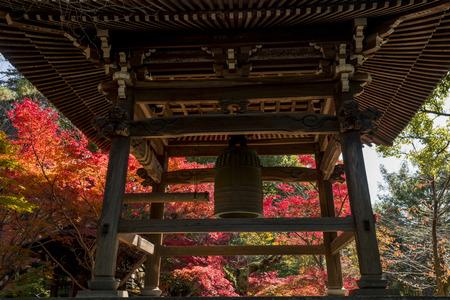 Japan autumn landscape 報道画像