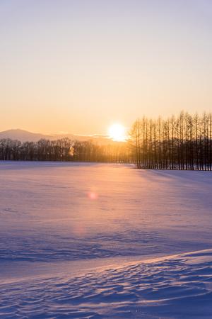 Snow landscape in in Hokkaido, Japan Stok Fotoğraf