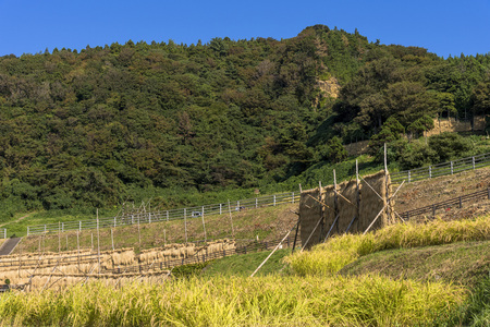 Noto Peninsula countryside 写真素材