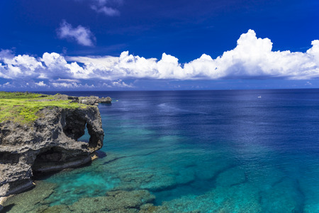 beautiful coral sea of Okinawa