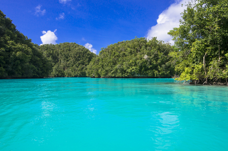 Sea of the coral reefs of Palau