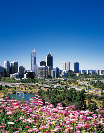 Perth City and Wildflower 報道画像