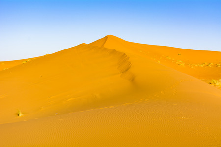 The dry ground, Sahara desert