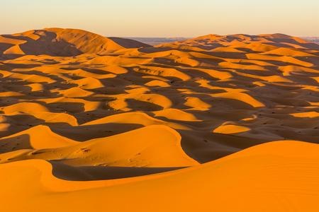Scorching Sahara desert