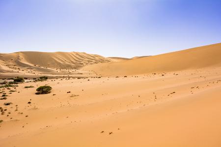 Namibia-Namib desert Stok Fotoğraf